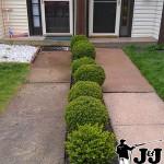 Concrete Sidewalk Pressure Washing