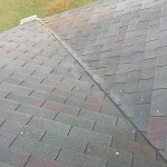 Roof After Power Washing