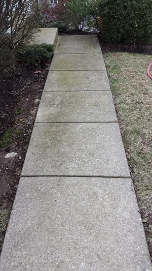 Wayne Walkway Before