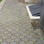 brick patio before pressure washing